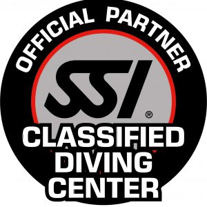 SSI_LOGO_Classified_Center_4C_CMYK